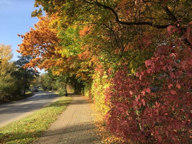 Farbenrausch Aachen