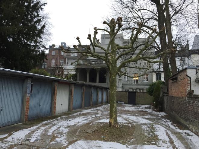 Blick in eine Toreinfahrt auf der Oppenhoffallee.   Rechts sitzt eine Miezekatze auf der Mauer und hält die Wacht am Rhein. Oder so.